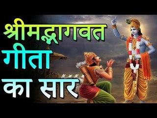 हिंदू धर्म में श्रीमद भगवद गीता का क्या है महत्व   श्रीमद्भागवत गीता का सार   Adbhut Kahaniyan