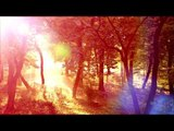 3O Mins Of Healing Meditation Music: musique relaxante, musique apaisante, musique apaisante