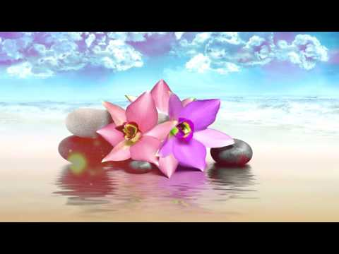 Meditation Music Relax Mind Body | Relaxation Music | Méditation, Yoga, Spa, Musique douce