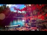 Deep Relax Meditation Music: Delta Waves Musique relaxante, musique apaisante, musique apaisante
