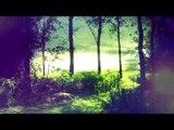 30 minutes de musique de méditation profonde: nature sonne, musique relaxante, musique apaisante