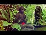 Relaxing 1 Stunden Flötenklänge , Zen-Meditation Musik, Entspannungsmusik , Relax Mind Body