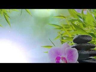 Стресс-рельеф Фортепианная музыка - духовная музыка, медитация, антистресс, позитивная
