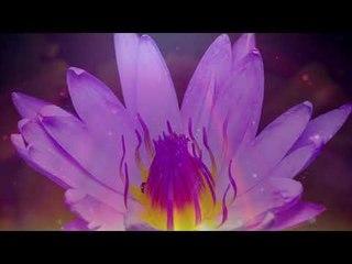 Tranquilo y pacífico Sunset Music, relajante música instrumental para piano - Relax Meditation Club
