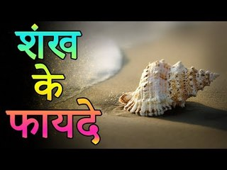 शंख के फायदे | Benefits of conch | Amazing Facts