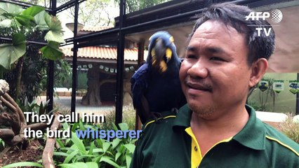 Singapore's deaf 'bird whisperer' has special avian bond