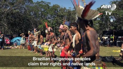 Native peoples set up protest camp in Brasilia over land rights
