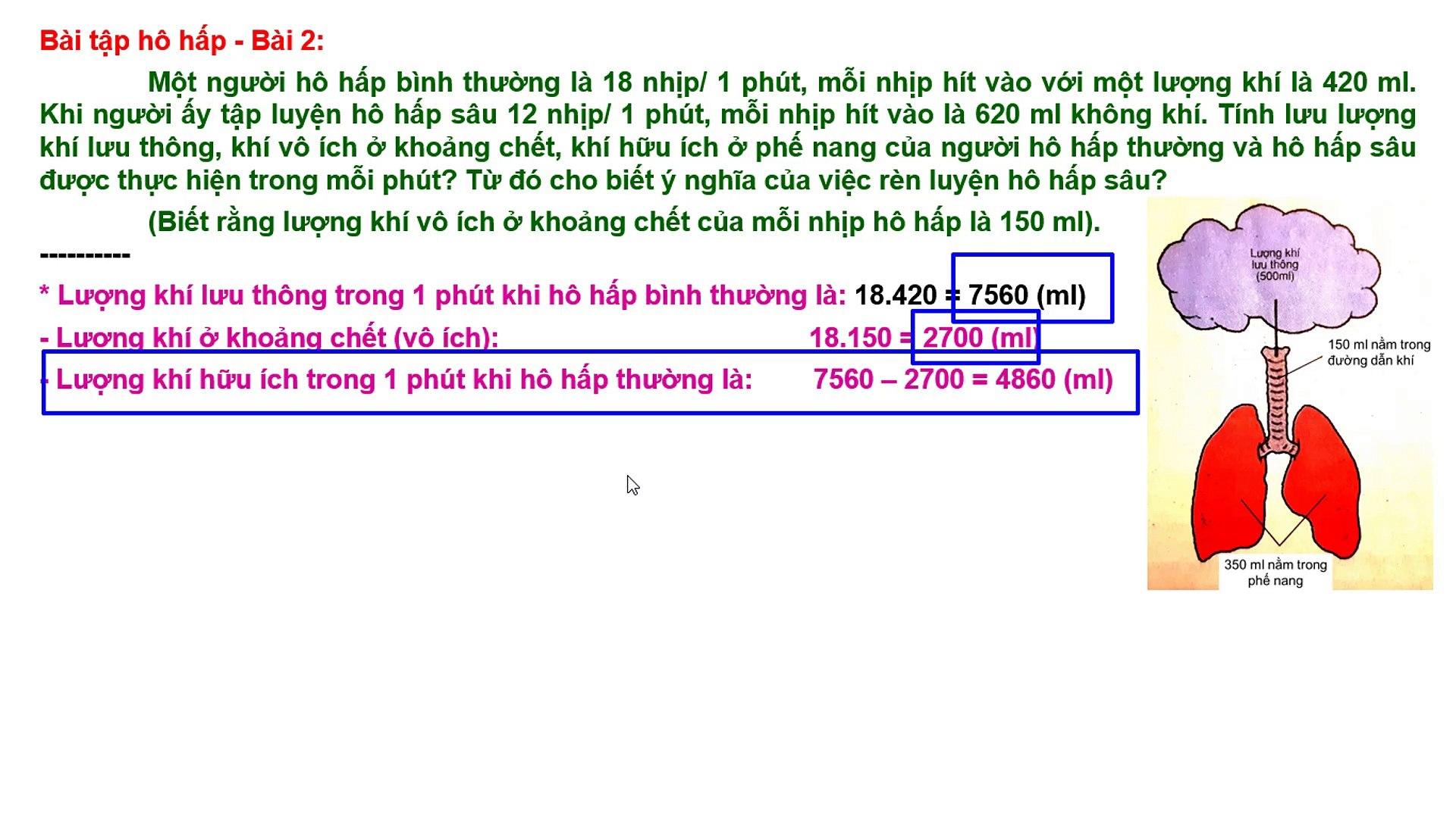 Bài tập BD HSG Sinh hoc 8 - Chương IV Hoạt động hô hấp - Bài 2