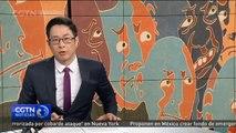 Se muestra la trayectoria del reconocido artista chino a través de más de 80 obras