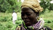 Nuevos cultivos mejoran la alimentación en Burkina Faso