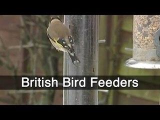 British Bird Feeders