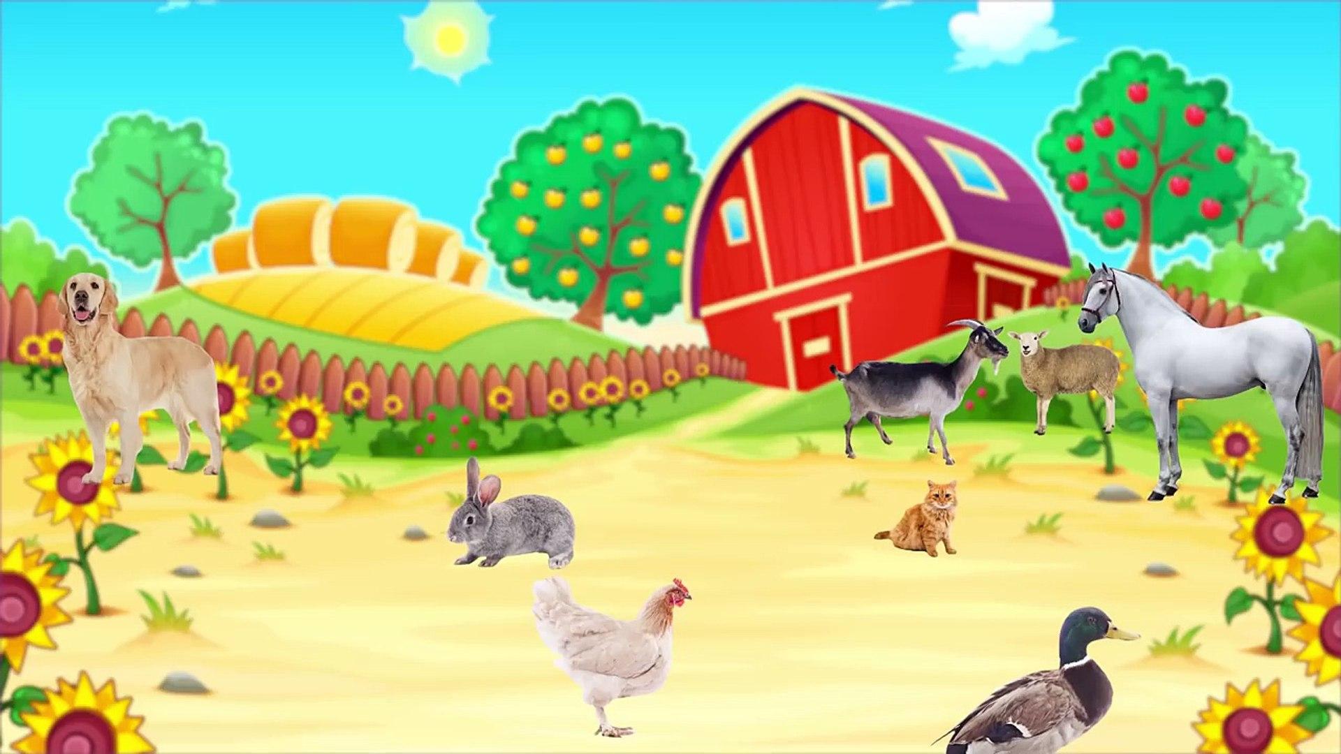 Çiftlik Hayvanlarını ve Yavrularını Öğreniyoruz - Çocuklar İçin Hayvanlar - Gerçek Hayvan Sesleri