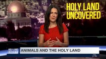 HOLY LAND UNCOVERED | Animals in the Bible | Sunday, April 29th 2018