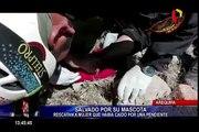 Arequipa: gracias a ladridos de su mascota, rescatan a mujer que cayó por una pendiente