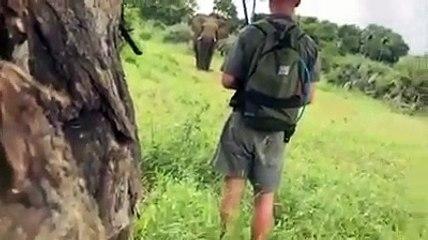 Grosse peur pour des touristes