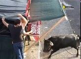 (DVD,32) Touradas Ilha Terceira 2011 AÇORES( 6ª Parte)