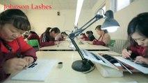 johnsonlashes Wholesale Mink Lashes factory 3D Mink Lashes manufacturer 3D Silk Lashes and Horse Lashes