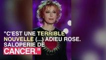 Rose Laurens : le cancer a tué la chanteuse française