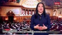 Budget européen 2020 : le Sénat veut préserver les moyens de la PAC - Les matins du Sénat (02/05/2018)