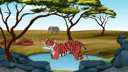Саванна - Новый мультик для малышей о животных