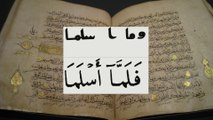 Koran Textual Criticism 4 - Variants of the Koran