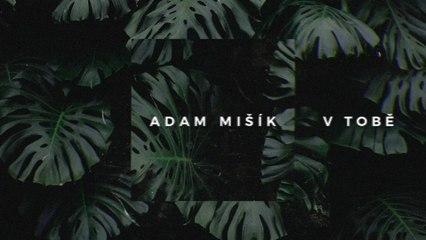 Adam Mišík - V tobě