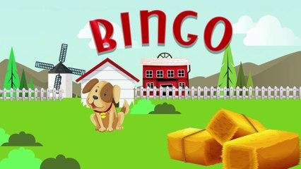Bingo   Nursery Rhymes   Bingo Rhymes For Children by Doo Doo Kids Songs