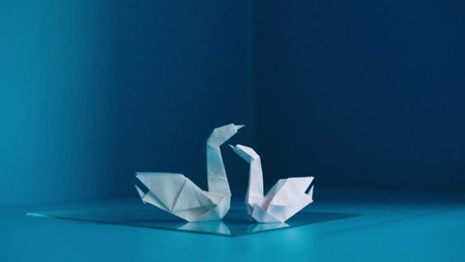 Julia Adams - origami