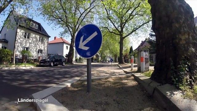 Hammer der Woche – Schilderwald in Platanenstraße