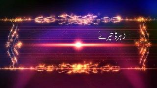 WAJHI HASSAN ZAIDI | MANQABAT ALBUM 2018-19