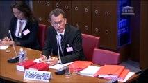 Audition par la Commission des affaires sociales - Commission d'enquête sur le burn out- Assemblée nationale - Pradel avocats -
