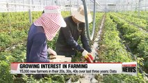 Age group of Korean farmers widens with rise of young farmers and elders returning from cities