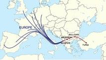 Raporti: Shqiperia vend prodhimi i kanabisit