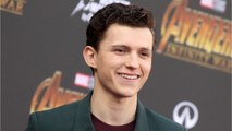 Tom Holland Saved A Lost Dog Today
