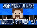 Subs MineChallenge - Parkour by Pedro - #1