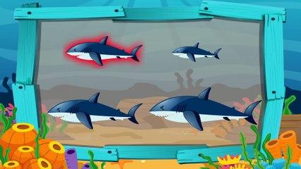 Динозаврик Дэнни - Акула и Дельфин (серия 26) - Развивающие мультики для самых маленьких