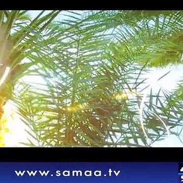 Naya Din   SAMAA TV   Ali Arif   Kiran Aftab   Muhammad Shuaeb   10 May 2018