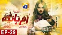 Umm-e-Haniya - Episode 29 | HAR PAL GEO