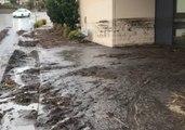 Clean-Up Begins After Wild Weather Slams Hobart