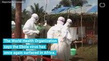 Ebola Virus Rears Its Menacing Head Once Again