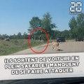 Une famille de touristes français s'approche des guépards et manque d'être attaquée