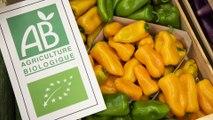 Hôpital de Lannemezan: manger local, bio et de qualité, c'est possible