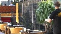 Nargile kafede Aslan sergilendiği iddiaları ekipleri harekete geçirdi