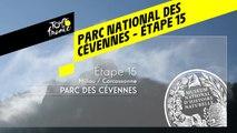 Étape 15 : Parc national des Cévennes