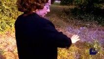 psychic investigators -Menphis Serial Killer