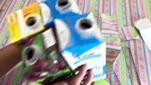 Do Lixo ao Luxo : Porta Talheres com Caixa de Leite e Papelão - Artesanato DIY