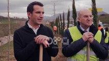 Ora News - Edhe 1000 selvi te Unaza e Madhe, TAP i bashkohet nismës së Bashkisë