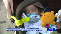 Three Fetuses Found in Trash or Sewage in New York Over the Last Few Days