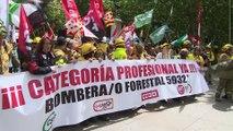 Bomberos Forestales reclaman una regulación de su profesión