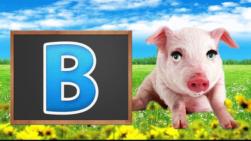 ABC Song For Children Pre k